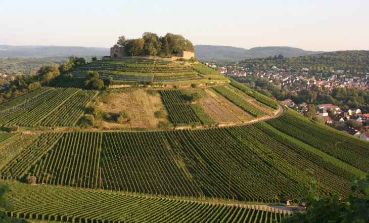 Weinsberg_Burgberg_20060905