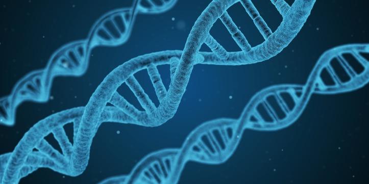 dna science genetic engineering